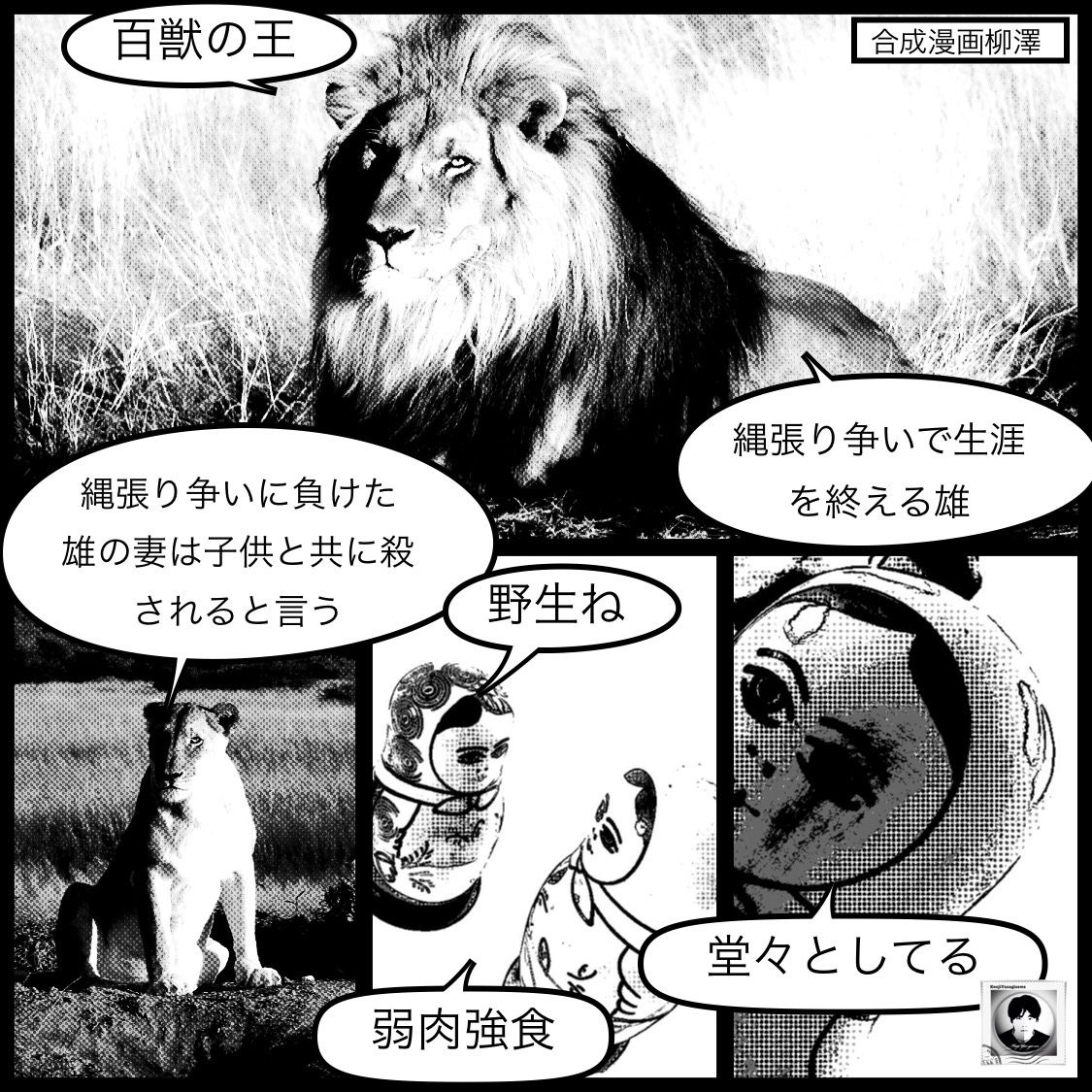 ライオンの生き様