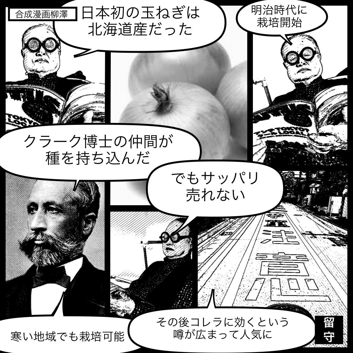 日本初の玉ねぎ栽培