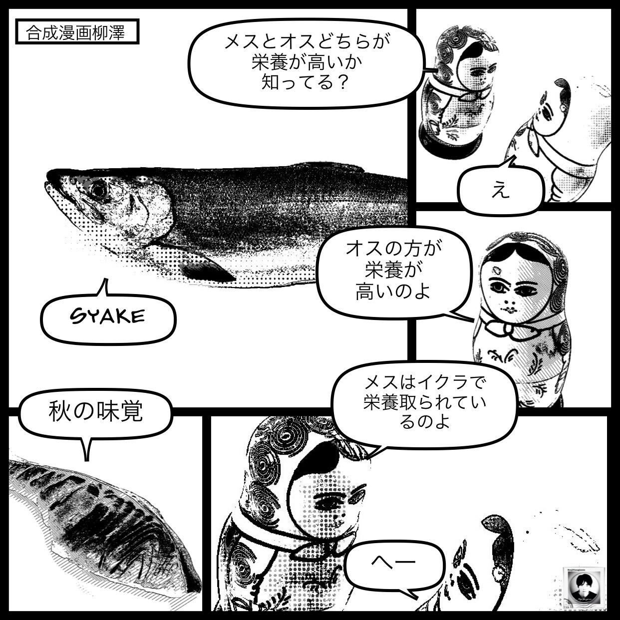 ▼食欲の秋  鮭はオスメスのどちらが美味しいか?
